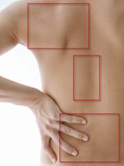 腰痛の原因はどこに